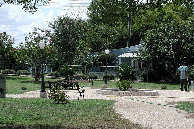 Image of Green tree court yard